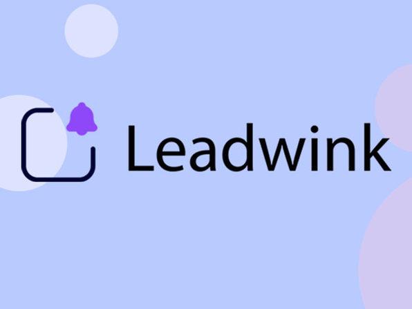 Leadwink Pro Plan: Lifetime Subscription