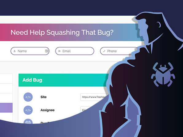 The Bug Squasher: 40 Bugs Per Month & 3-Yr Subscription