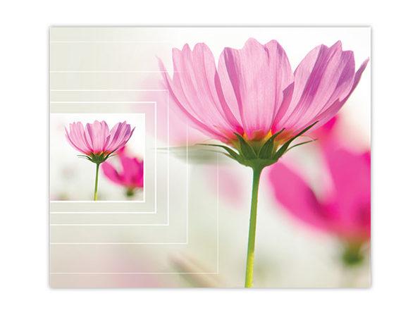 Product 13987 product shots2 image