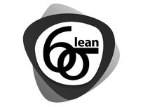 Lean Six Sigma Black Belt Training & Certification - Product Image