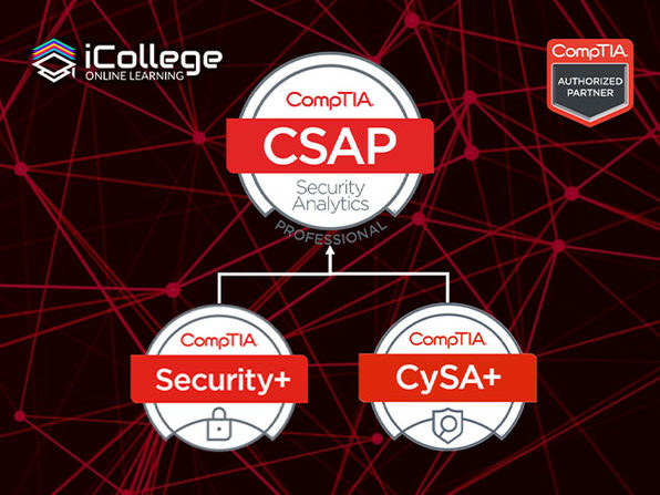 The CompTIA Security Analytics Expert Bundle