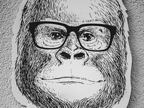 Drawing Animal Portraits For Beginners - Product Image