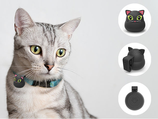 """G.o.a.t Pet Speaker Bluetooth Connect /""""blackie The Cat/"""""""