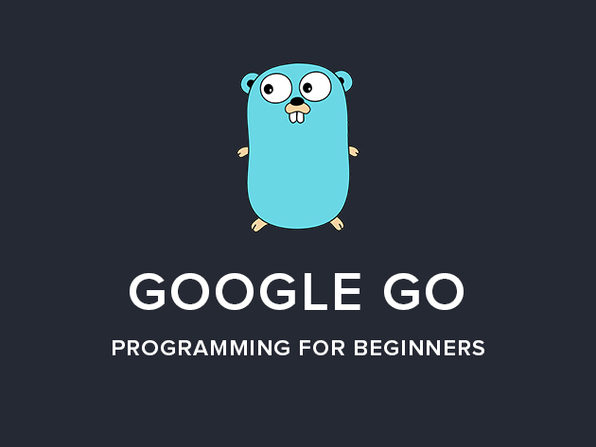 Google Go Programming For Beginners (Golang) - Product Image