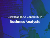Certification of Capability in Business Analysis™ (CCBA®) - Product Image