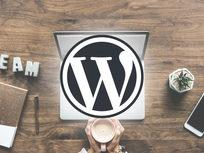 Wordpress Aliexpress Drop Shipping Master Class - Product Image