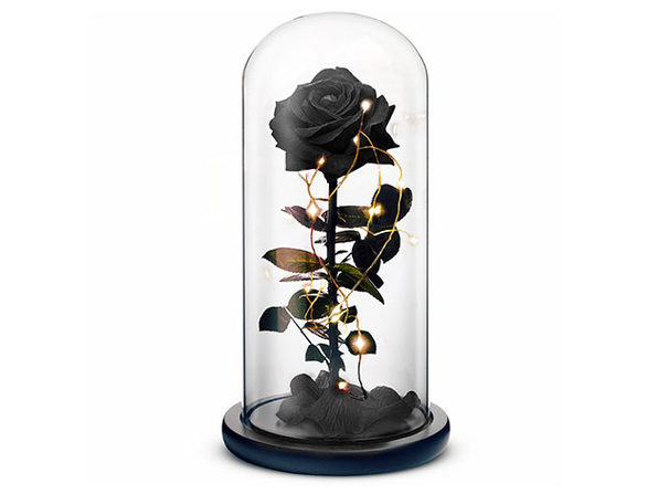 Rosephoria Beauty and the Beast Dome (Black)