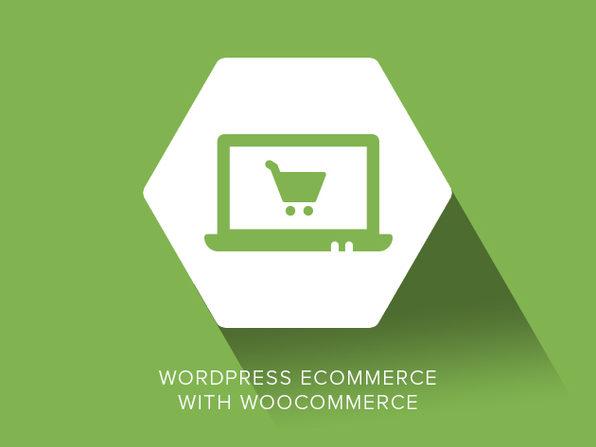 WordPress eCommerce with WooCommerce - Product Image