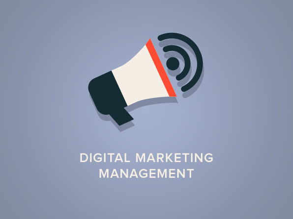 Digital Marketing Management - Product Image