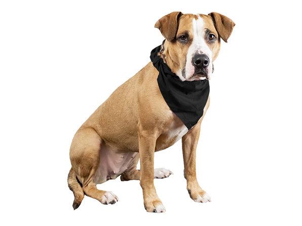 4 Pcs Plain Cotton Pets Dogs Bandana Triangle Shape  - Large & Washable - Blue