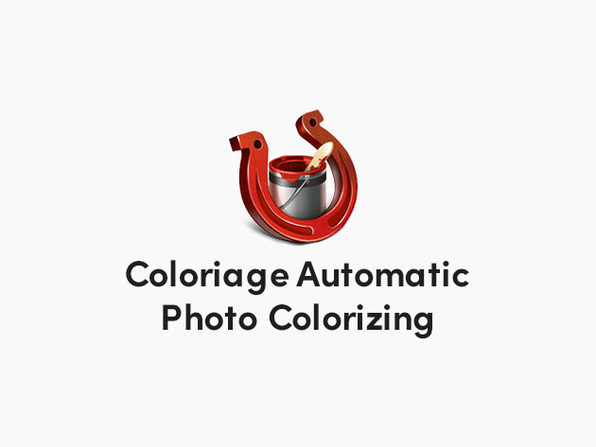 Akvis Coloriage Photo Colorizing App: Lifetime License (Business)