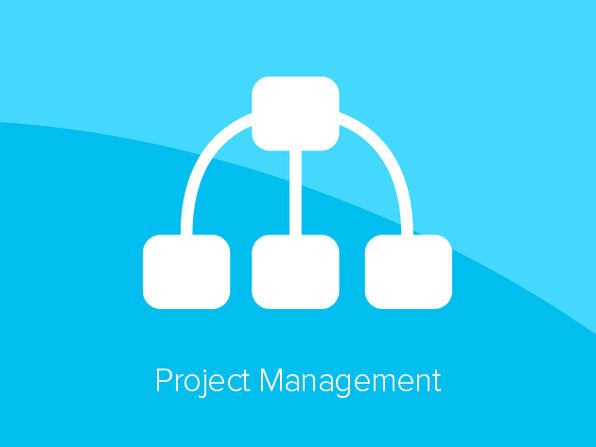 Project Management Course - Product Image