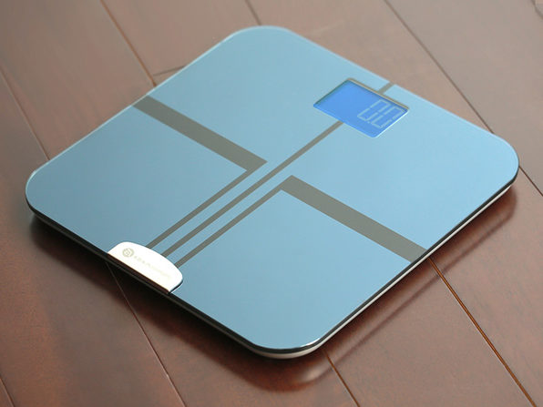 BF1 Body Fat Analyzer