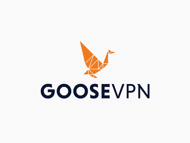 Teaser for Goose VPN: Lifetime Subscription