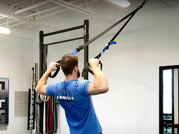 EDGE Suspension Trainer