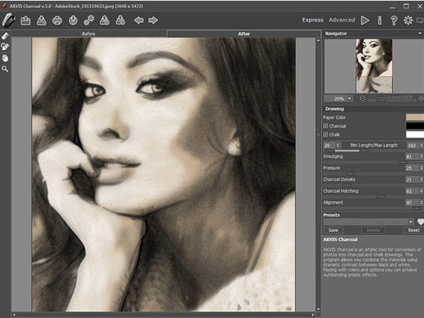 Akvis Charcoal Artistic Tool: Lifetime License (Business)
