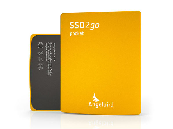 SSD2go Pocket USB Drive, 256GB (Gold) - Product Image