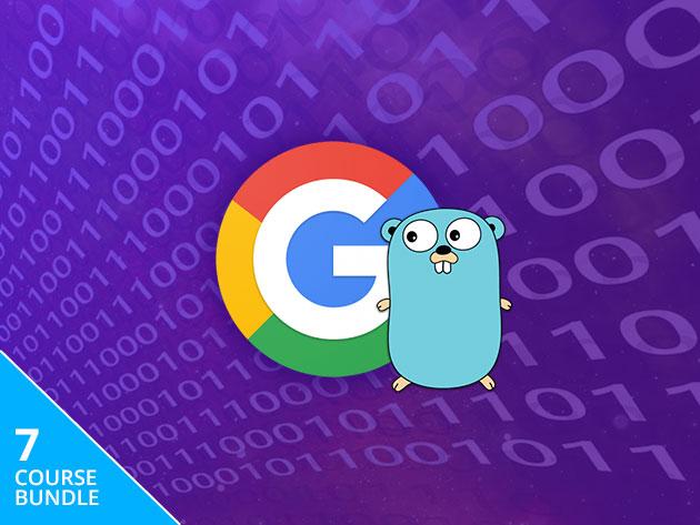 The Complete Google Go Developer Master Class Bundle