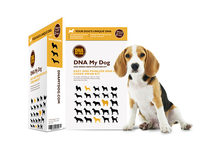 DNA My Dog Breed Identification Test - Product Image