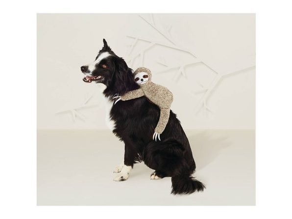 Hyde and Eek! Pet Sloth Rider Halloween Dog and Cat Costume, X-Large Size, Brown - Product Image
