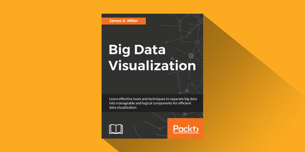 Big Data Visualization - Product Image