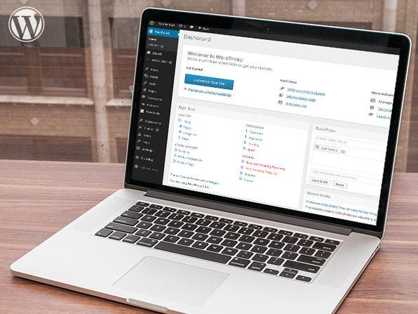 Free Beginner WordPress Online Tutorial - Product Image