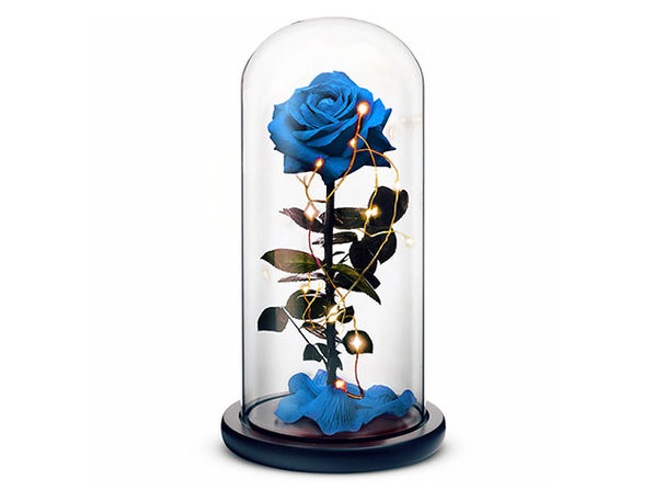 Rosephoria Beauty and the Beast Dome (Blue)