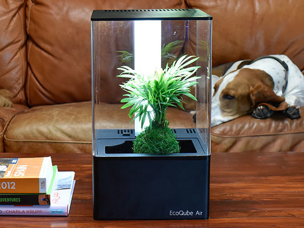 EcoQube Air Desktop Greenhouse (Premium UV)