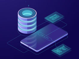 The Essential Microsoft SQL Server Training Bundle