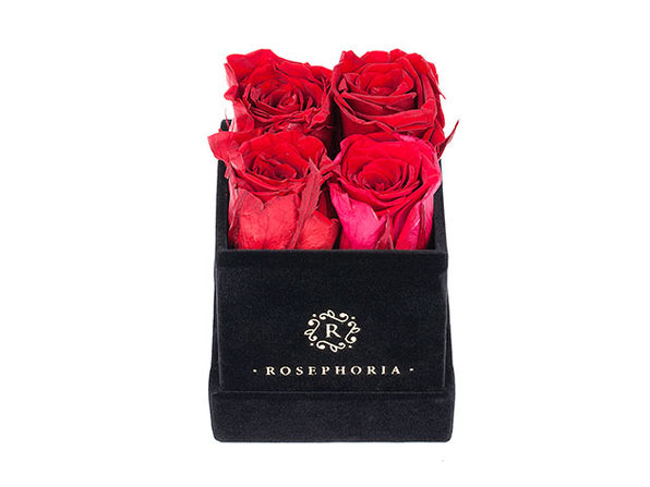 4 Rose Square Box - Red - Product Image
