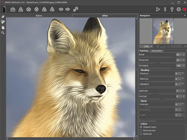 Akvis AirBrush Photo to Painting Software: Lifetime License (Business)